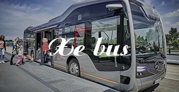 Dịch vụ xe bus