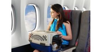 Hành lý đặc biệt VietnamAirlines