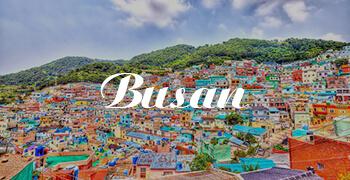 Vé máy bay đi Busan Vietnam Airlines