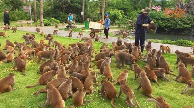 Những địa điểm du lịch tại Nha Trang