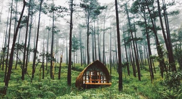 Những địa điểm du lịch tại Đà Nẵng